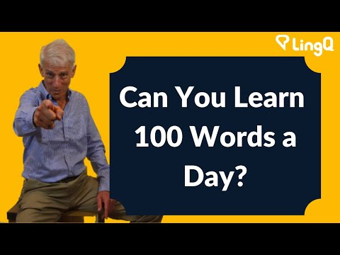 Learning Words - 100 Words a Day?
