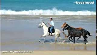 Cavalos Na Areia Comporta Jogos de Cavalos na Areia Alcácer do Sal Setúbal