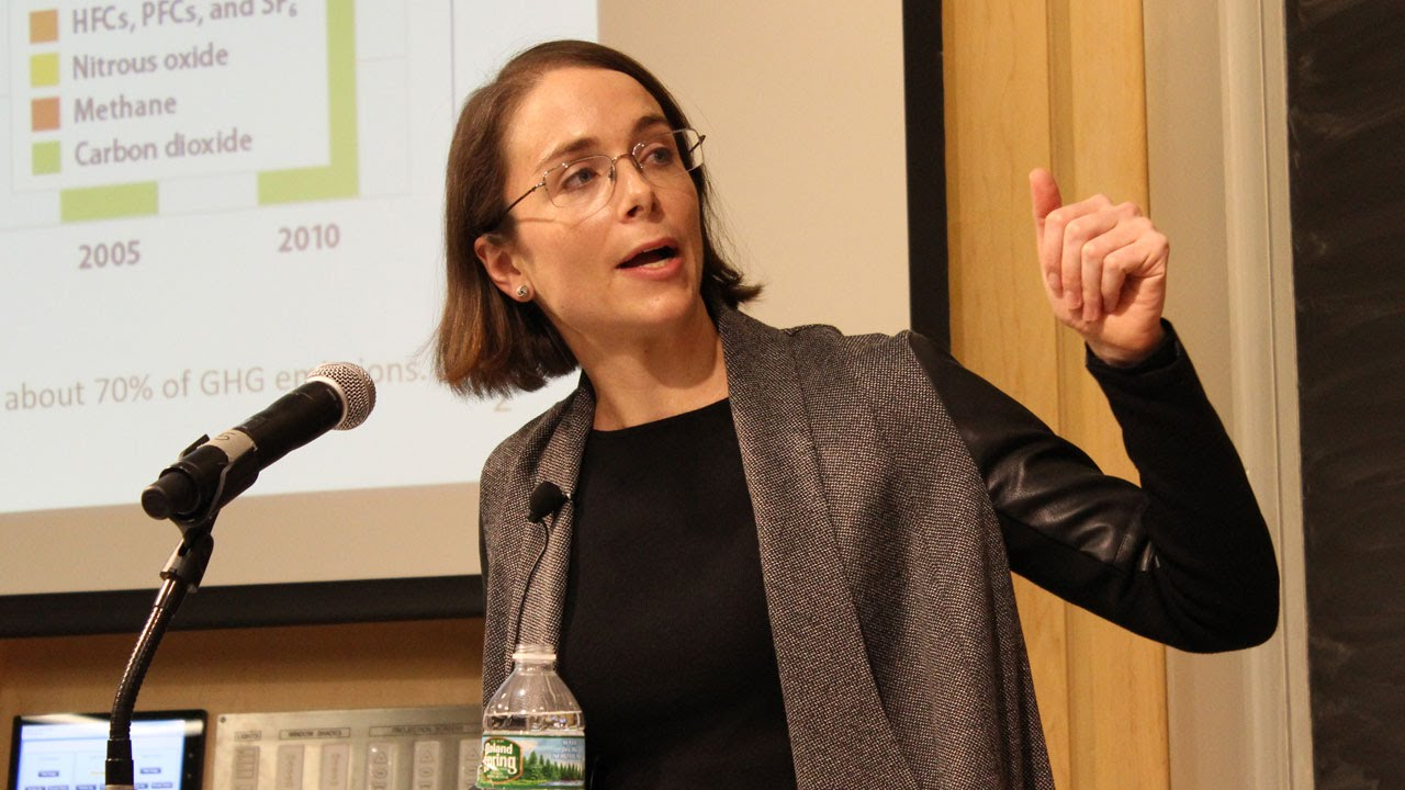MIT's Valerie Karplus discusses gas tax and climate change