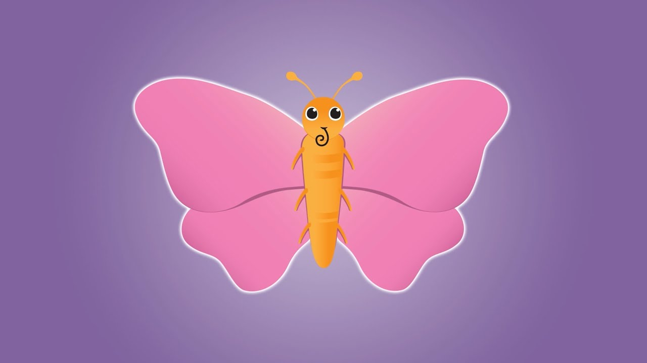 Butterfly Song Animated Youtube