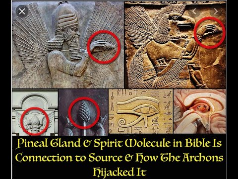 Pineal Gland & Spirit Molecule in Bible Is Connection to Source & How The Archons Hijacked It