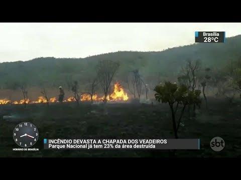Incêndio devasta a Chapada dos Veadeiros, em Goiás | SBT Brasil (24/10/17)