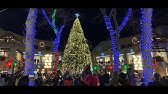 BYOB Holiday Lights Trolley Boston