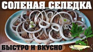 Соленая селедка 🐬 Рецепт малосольной сельди 🌶️ Как посолить селедку