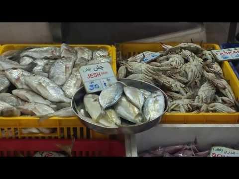 Qatar Fish Market - 2017 | Doha | Explore the diverse and assorted Underwater world !!