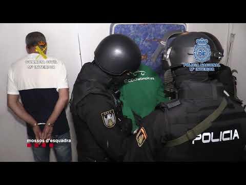 Desarticulada en el Prat de Llobregat un clan familiar dedicado al tráfico de marihuana