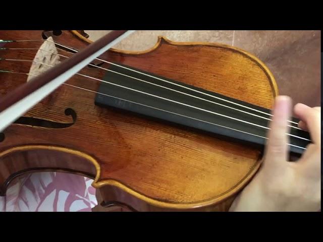 Ifstrings Master Build #346 Guarneri del Gesu 1741