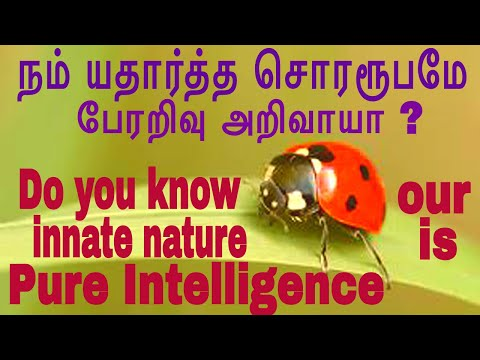 Pure intelligence is our true nature. (Tamil) (HwST00220)