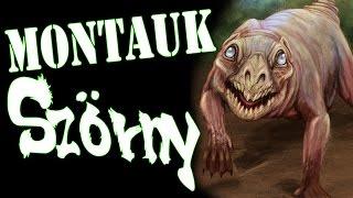 A Montauk Szörny