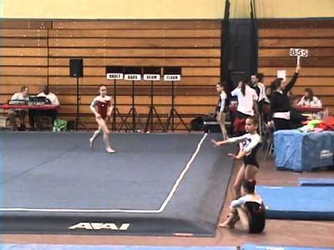 nesa gymnastics meet