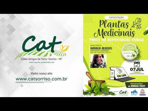 Projeto Cultivando Vida Sustentável - Plantas Medicinais PANCS na Alimentação Diária