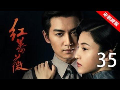 红蔷薇 35丨Wild Rose 35(主演:杨子姗,陈晓,毛林林,谭凯)【未删减版】
