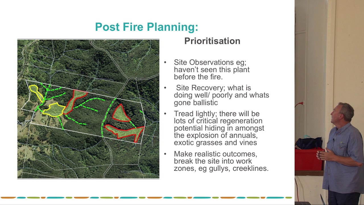 Post Bushfire Weed management