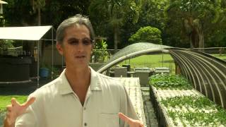 Aquaponics in Kauai, Hawaii | Renewable Food Production