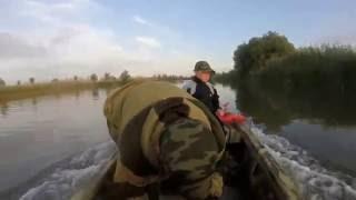 рыбалка в Астраханской области(ловим сомиков на лягушка,зеленого червя и не больших сазанчиков на жмых., 2016-08-21T16:45:23.000Z)