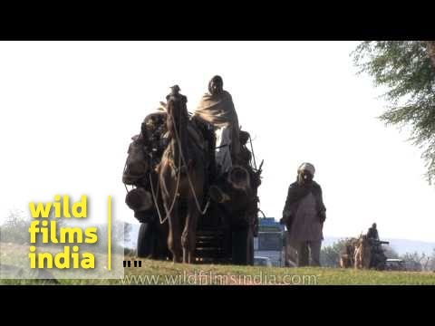 Indian rural village life