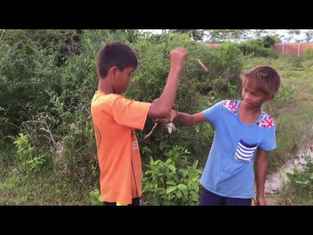 Amazing Children Make Slingshot for Hunting Frogs - How to make slingshot