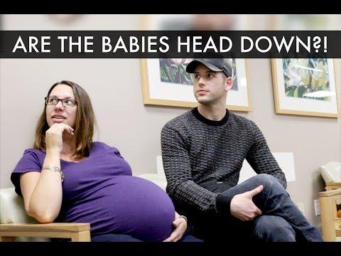36 Weeks Surrogate Pregnancy Update  Gay Dads & Twin IVF Surrogacy Journey  McHusbands