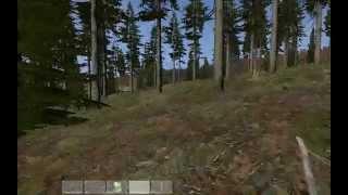 Как сделать удочку в DayZ Видео