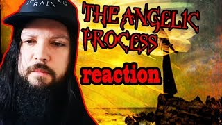 The Angelic Process Reaction!!