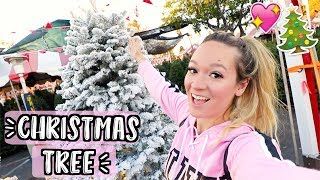Download youtube to mp3: Shopping for Christmas Trees! Vlogmas Day 5!!