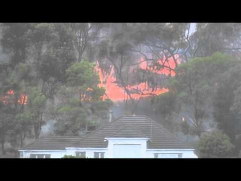 Bushfire in Donvale 1