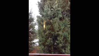 A neve e meu sotaque de alemão, rsrs