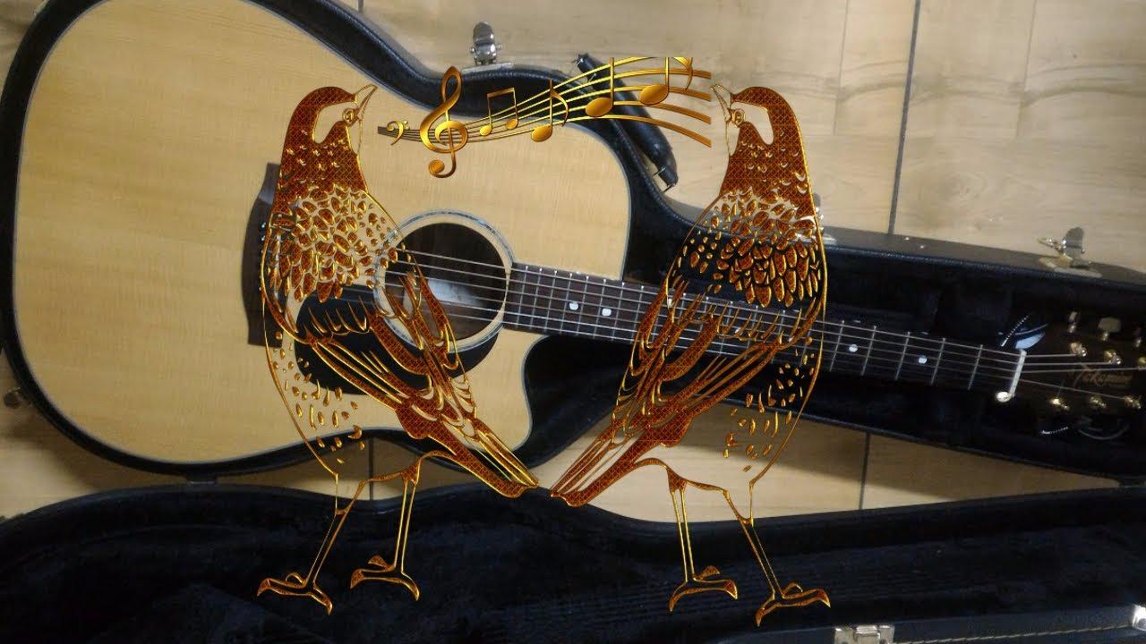 Resultado de imagem para passarinho e violão