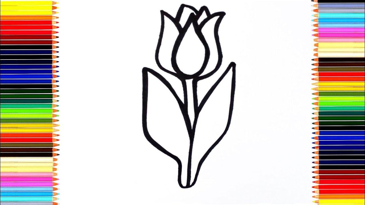 Как нарисовать цветы тюльпаны / мультик раскраска тюльпан ...