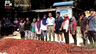 Download Video PT. Sampoerna agro Tbk. Sukamara MP3 3GP MP4