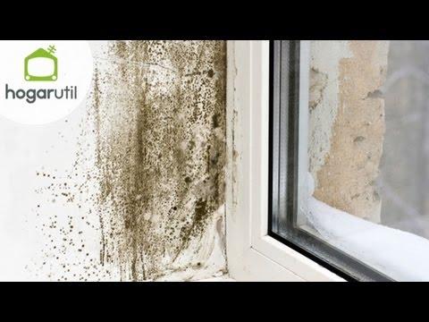 Muy masculino humedad en la pared doovi - Eliminar humedad paredes interiores ...