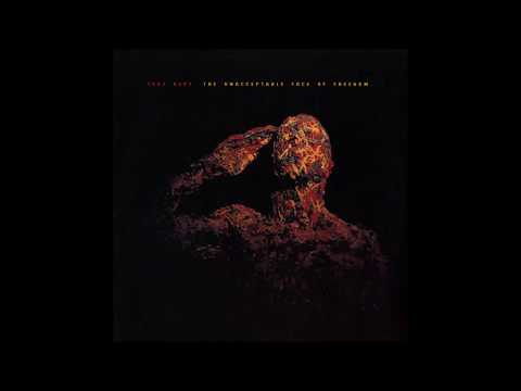 Test Dept. - The Unacceptable Face of Freedom mp3 baixar