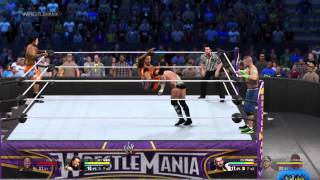 WrestleMania 30 tag team champions