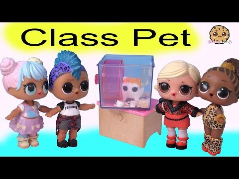 New Class Pet ! LOL Surprise Punk Boi + Playmobil Play Video by Cookie Swirl C