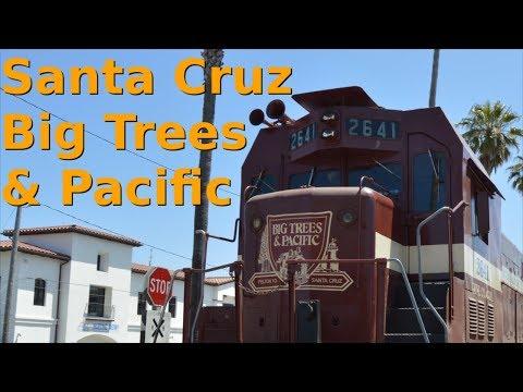 Santa Cruz, Big Trees & Pacific Railroad - 4th June 2017