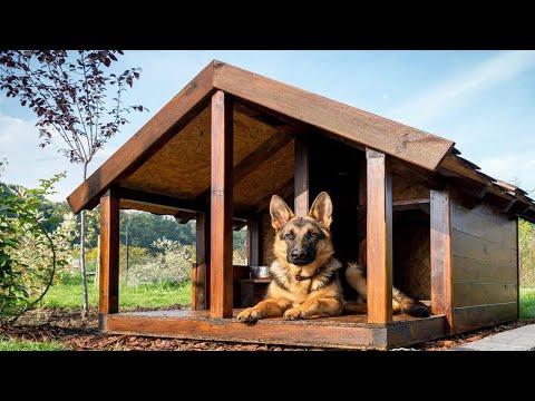 Фото вольеры и будки для собак своими руками