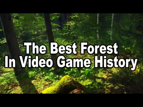 Kingdom Come: Deliverance  – Best Forest in Video Game History – 4K 60 FPS