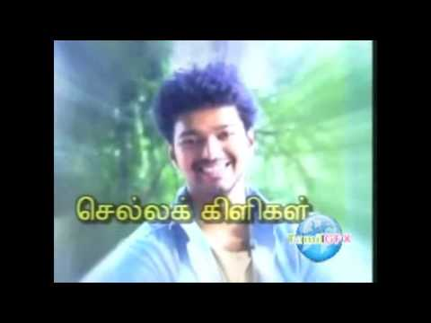 Actor Vijay Depavali Special program SunTv 2006