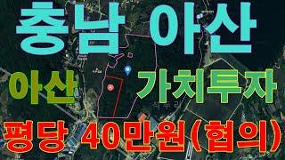 부동산경매 - 충남 아산시 염치읍 석두리 산 29-29…