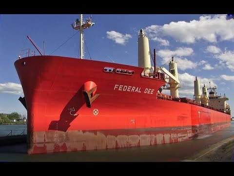 Ship FEDERAL DEE Lowered At Lock 7, Welland Canal