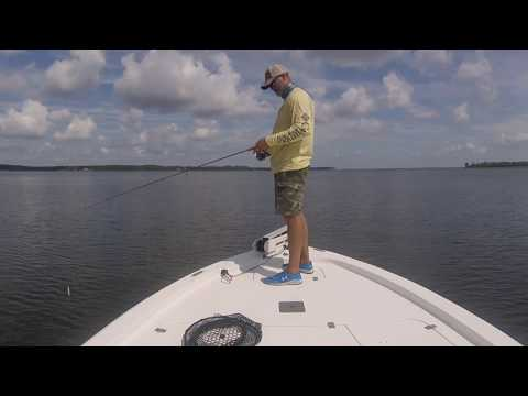 Inshore fishing on the Pamlico