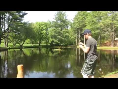 Bass fishing a new pond doovi for Pond bass fishing tips