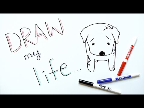 Draw My Life | Dog Meat Trade in South Korea