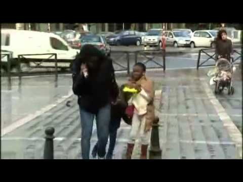 Strong Winds Knock Down Pedestrians Trees In Brussels And ...