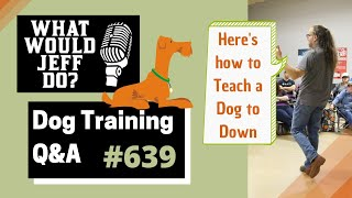 Dog Training - Training Calm Dogs - Teaching a Dog Down - What Would Jeff Do? Q&A  Ep.639 (2020)