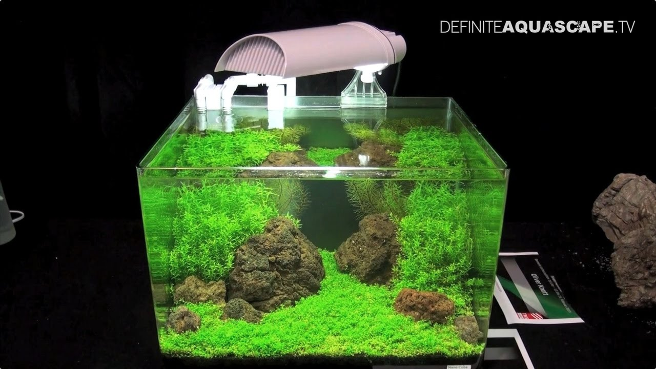 The Art of the Planted Aquarium 2015 - Scapers Tank (Nano) category ...
