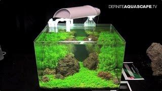 the art of the planted aquarium 2015 scaper s tank nano category part 5