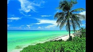 Кубинские каникулы