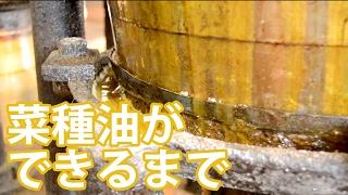 平出なたね油ができるまで(玉絞め搾油)- Japanse traditional rapeseed oil expression