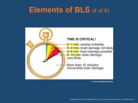 Ch  13 BLS Resuscitation